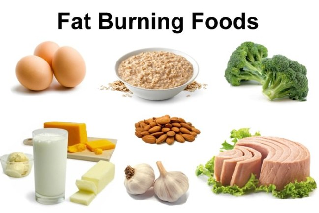 Fat Burning Foods To Lose Weight