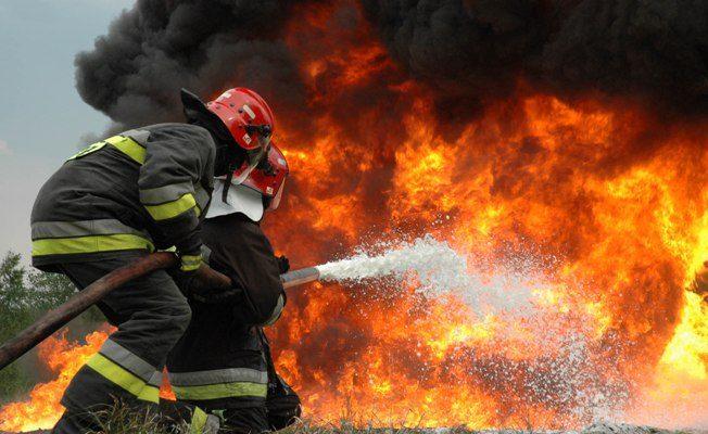 Fireman II 6 Posts Tenable At Maun
