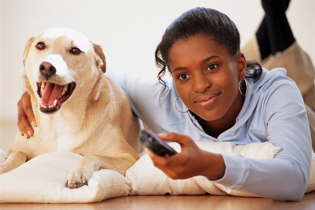 Photo of 10 Ways To Take Care Of Your Pets