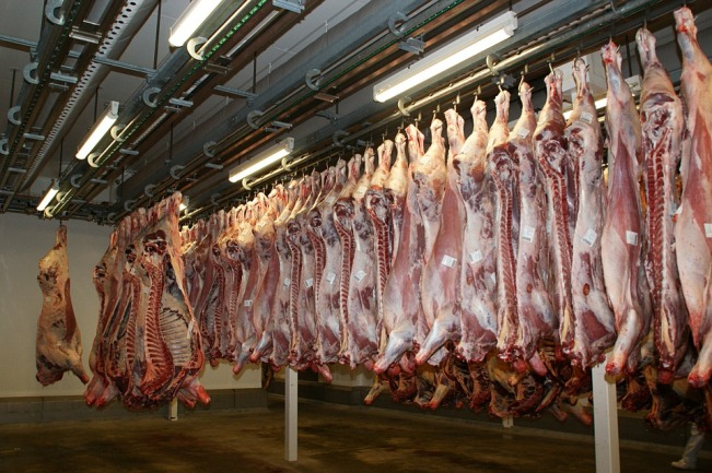 Photo of Processing Supervisor Wanted For A Donkey Abattoir Facility