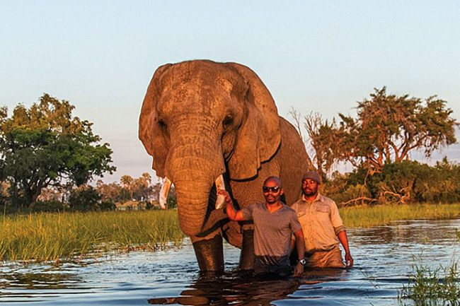 Photo of Photographer And Travel Writer Thalefang Charles's New Book On His Travels In Botswana