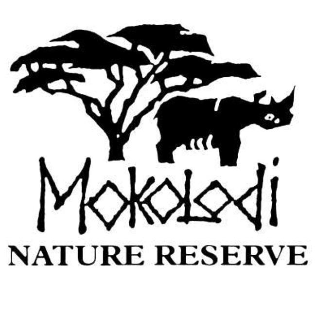 Photo of Mokolodi Nature Reserve Is Hiring!