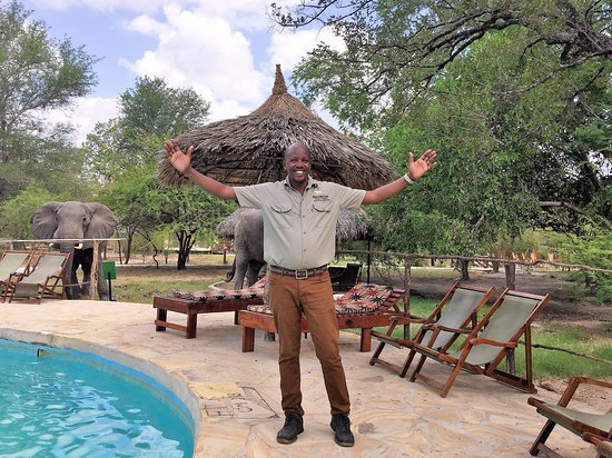 Photo of Safari assistant wanted in Maun