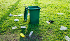 How to Choose The Right Skip Bins?
