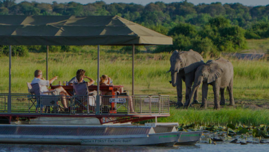 Photo of 5 Photo Of Chobe Game Lodge That Prove It's A Piece Of Paradise