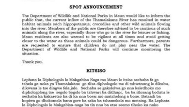 Photo of Current Inflow Of Thamalakane River Results In Dangerous Animals