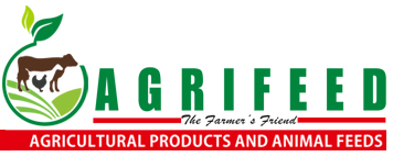 Photo of Mont Trade (Pty) Ltd T/A The Agric Shop/ Feed Center Botswana Employment Opportunities