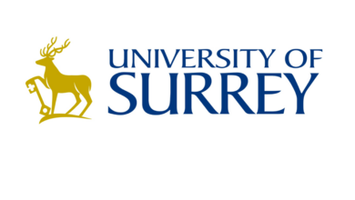 Photo of Women in Leadership Scholarship at University of Surrey